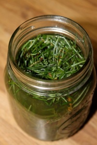Fir Vinegar