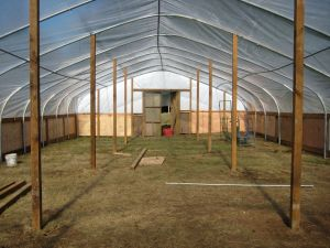 """Front """"yard"""" hoop house.  Currently with no plastic."""